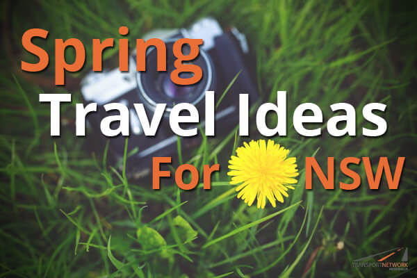 Spring Travel Ideas For NSW